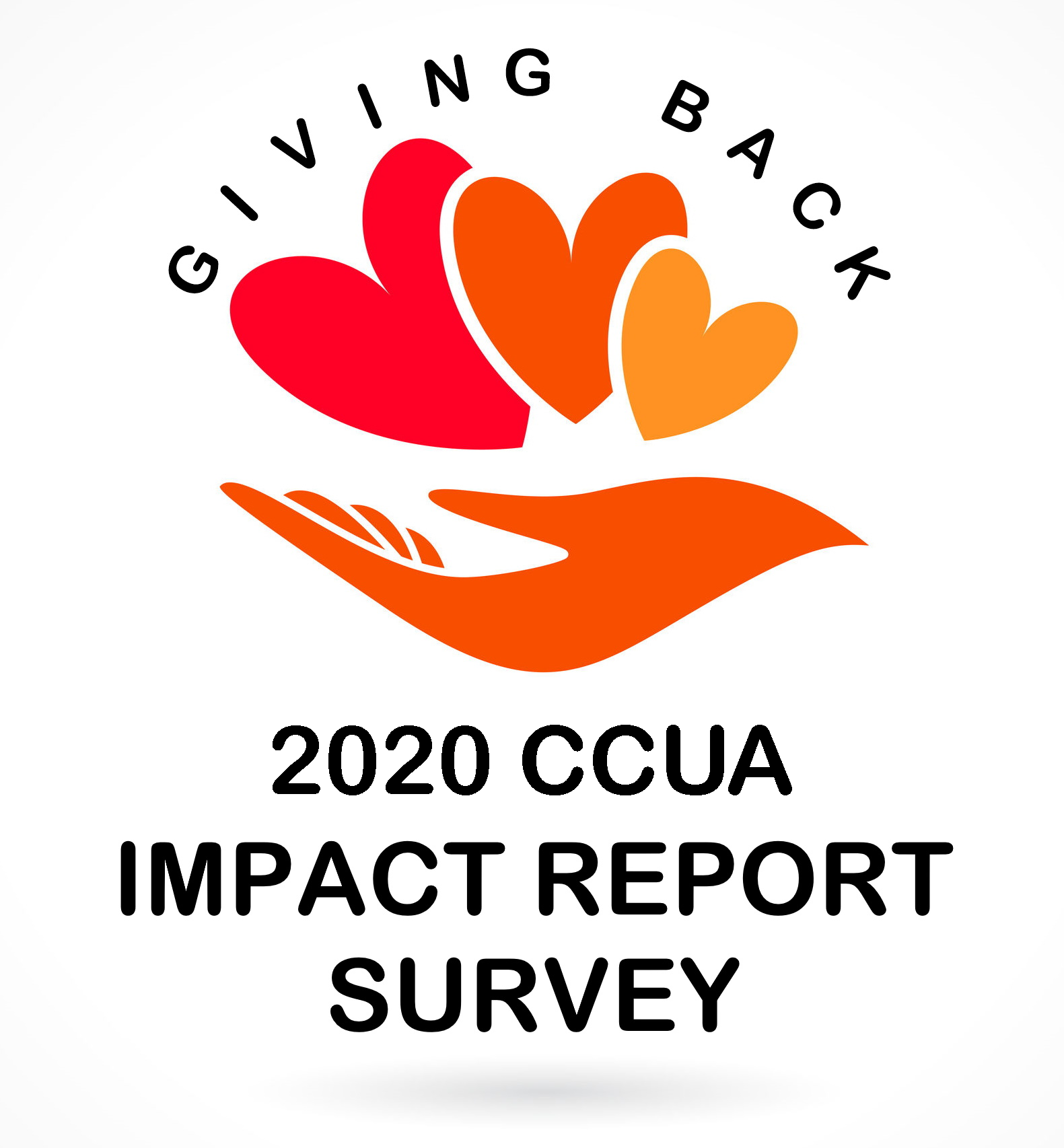 Impact Report Survey