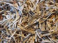 Leominster Credit Union to Hold Fall Shred-A-Thon
